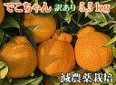 こだわりでこちゃん訳あり5.5Kg【減農薬栽培】元祖
