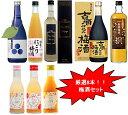プレゼント ギフト お歳暮 福袋 梅酒 蓬莱泉日本酒でつくっ...