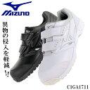 【送料無料】 ミズノ MIZUNO 安全靴 C1GA1711...