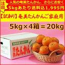【大幅値下げ】【送料無料】訳あり奄美たんかんご自宅用20kg【サイズ指定なし】