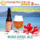 【送料無料】パッションウィートエール 330ml(3本)【奄美群島クラフトビール】