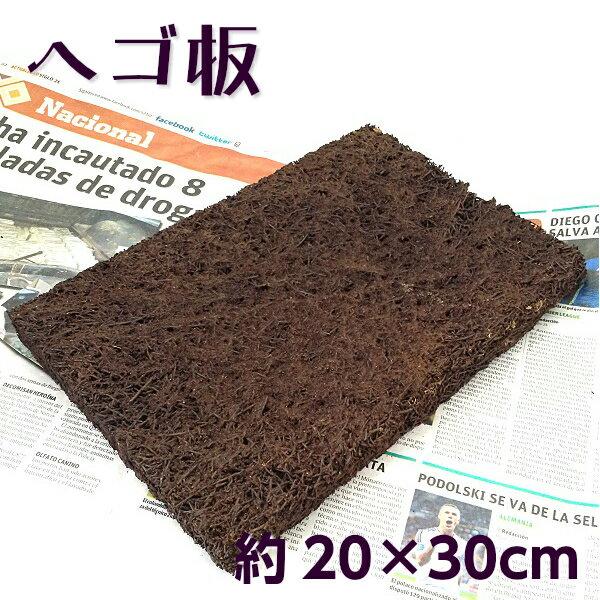 ヘゴ板 Mサイズ 約20×30cm