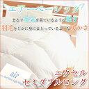 【送料無料】【TD】 軽くて暖かい エアーベーシック 羽毛布...