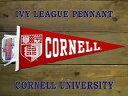 アイビーリーグ ペナントCornell University