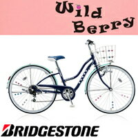 WildBerry(ワイルドベリー)ダイナモランプモデルWB406