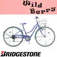 WildBerry(ワイルドベリー)ダイナモランプモデルWB606