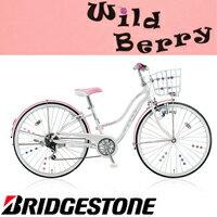 WildBerry(ワイルドベリー)外装6段変速モデルWB466
