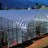 農ポリ 厚さ0.1mm×幅210cm×長さ100m