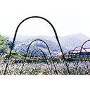 アーチパイプ ネット栽培用 径16mm×幅80cmx高さ30cm ( 雨よけ 雨除け パイプ支柱 接続 部材 部品 ガーデニング 野菜づくり トンネル栽培 園芸支柱 家庭菜園 トンネル支柱 アーチ パイプ アーチ支柱 園芸用品 農業用資材 農業資材 )
