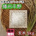 播州平野 玄米5kg【精米無料】【兵庫県産ブレンド米】