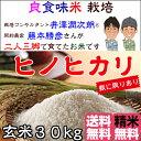 Fuzimoto_hn30