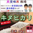 Fuzimoto_kn05
