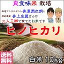 Inoue_hn10