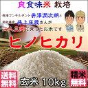 Inoue_hn10_h28