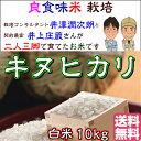 Inoue_kn10