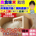 Hinohikari_30_3