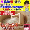 Hinohikari_5_3