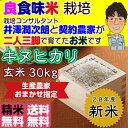 Kinuhikari_30_h28