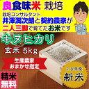 Kinuhikari_5_h28