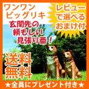 \ページ限定・マジッククロス付/ ワンワンビッグリキ 【送料...