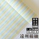 【送料無料】日本の縞 遠州縞 小春 綿 着物 洗える着物 大人可愛い おしゃれな きれいめ