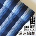 遠州綿紬 S-10 -青海(あおうみ)- 木綿反物