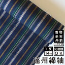 遠州綿紬 S-22 -薫風(くんぷう)-綿 着物 洗える着物 大人可愛い おしゃれな きれいめ
