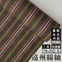遠州綿紬 S-33 -中秋(ちゅうしゅう)-