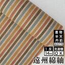 生地/縞紬 S-36 -黄葉(こうよう)- 木綿反物