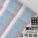 遠州綿紬 S-58 -月白(げっぱく)-綿 着物 洗える着物 大人可愛い おしゃれな きれいめ