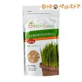 犬と猫が好きな草のタネ(200g)【HLSDU】 /[猫草]