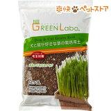 犬と猫が好きな草の栽培用土(3L)【HLSDU】 /[猫草]