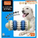 ハーツデンタル スクラバー中〜大型犬用(1コ入)【Hartz(ハーツ)】[犬 おもちゃ][爽快ペットストア]