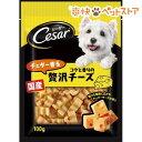 シーザースナック チェダー香るコクと香りの贅沢チーズ(100g)【d_cesar】【シーザー(ドッグフード)(Cesar)】[爽快ペットストア]