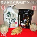 令和元年産新米☆特別栽培米中魚沼産コシヒカリ7kg(富井さん)