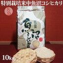 令和元年産新米☆特別栽培米中魚沼産コシヒカリ10kg(大島さん)