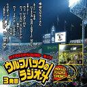 【セール】 Wolf Pack Presents 『ウルフパックのラジオ汁Vol.03』 VOL.3 全41曲 ラジオショーミックス MIXCD CD クラブ ミュージック ..
