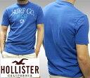 【送料無料】【セール】 ホリスター メンズ Tシャツ HOLLISTER インポート ブランド ファッション カジュアル Safari サファリ 雑誌 掲載 アメカジ サーフ スタイル 正規 商品
