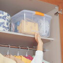 高い所BOX TB-54D プラスチック収納、押入れ収納【アイリスオーヤマ】【RCP】【0530in_ba】
