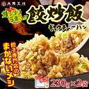 【大阪王将】【大阪王将】餃炒飯230g×2袋(ギョウチャーハン)