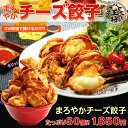 50 mellow cheese gyozas [Osaka king] [gyoza] to child to tidbits of extreme popularity ♪ beer and the wine! [cheese] SSspecial03mar13_food