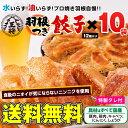 【大阪王将】羽根つき餃子12個入×10袋セットギョウザ・ギョーザ福袋