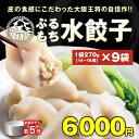 水餃子 大容量 14個入×9袋セット 大阪王将 福袋