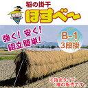 稲の掛干し(稲干台) ほすべー B-1型 三段掛け 5畝歩用 掛干長20m