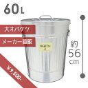 【OBAKETSU】オバケツ M60 (60Lサイズ・シルバー)