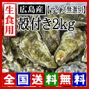 【期間限定】生牡蠣 生食用 殻付き牡蠣2kg 広島牡蠣(サイズ無選別)[お取り寄せ] 牡蠣の大きさは大小様々です。[産地直送] 活きたままお届け致します!
