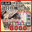 数量限定大特価!生牡蠣 加熱用 殻付き牡蠣 一斗缶(約100個)[サイズ無選別] 牡蠣の大きさは大小様々です。【ナイフ・手袋付】/牡蠣 殻付き/牡蠣