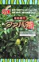 シジュムグァバ茶ティーパック