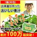 【青汁】お得な90包入り 神仙桑抹茶ゴールド90(3g×90包入)食物繊維が豊富な桑の葉と緑茶、シモンをそのまま粉末にしました。ビタミンやミネラルたっぷりだからお通じや野菜不足が気になる方の強い味方!お茶がわりに飲める抹茶味の青汁。毎日の美容と健康に!