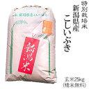 令和元年産特別栽培米新潟産こしいぶき玄米25kg/白米4.5...